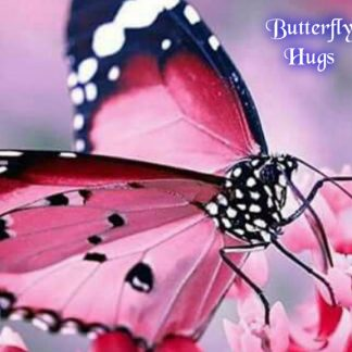 Butterfly Hugs Wax Melts