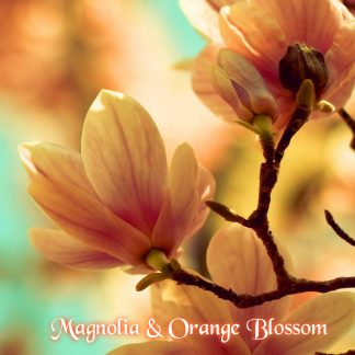 Magnolia and Orange Blossom Wax Melts