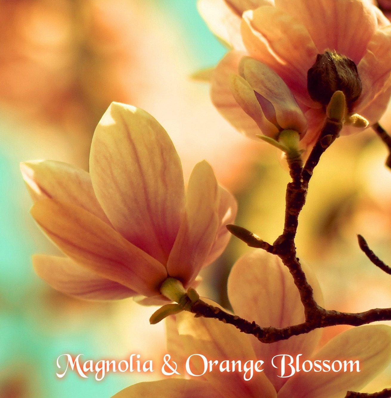 Magnolia And Orange Blossom Wax Melts Wax Melts Soy Wax Melts