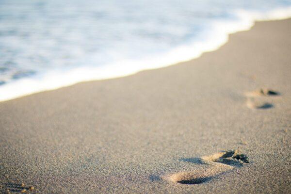 Beach Bum Wax Melts