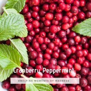 Cranberry Peppermint Wax Melts