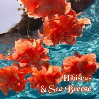 Hibiscus and Sea Breeze Wax Melts