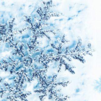Snowflake sparkle wax Melts