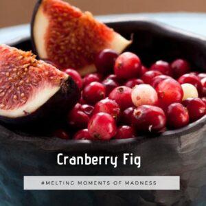 Cranberry Fig Wax Melts