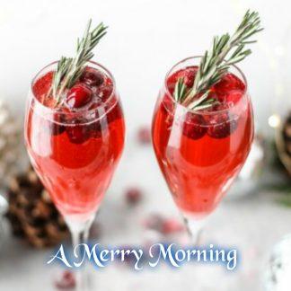 A Merry Morning Wax Melt