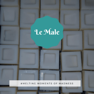 Le Male Wax Melts