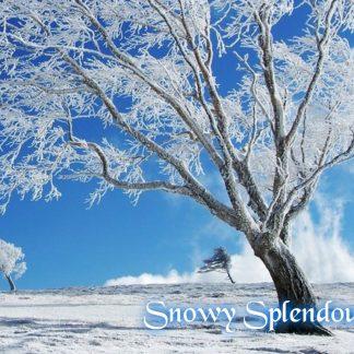 Snowy Splendour Wax Melts