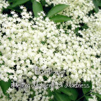 Elderflower Wax Melts