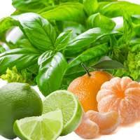 Lime Basil & Mandarin Wax Melts