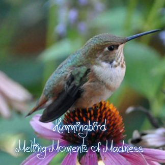 Hummingbird Wax Melts