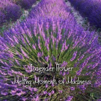 Lavender Flowers Wax Melts