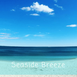 Seaside Breeze Wax Melts
