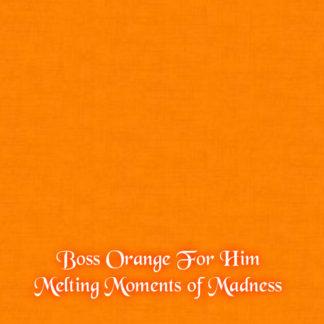 Boss Orange For him Wax Melts