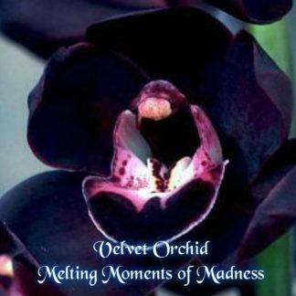 Velvet Orchid Wax Melts