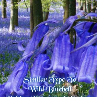 Wild Bluebell Wax Melts