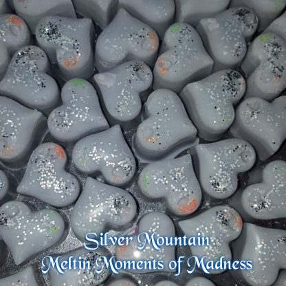 Silver Mountain Wax Melts