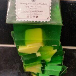 Lovely Melon Soap Slice