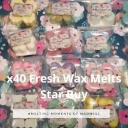 40 Fresh Wax Melts