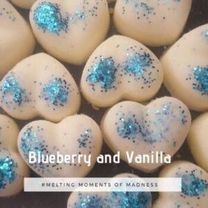 Blueberry Vanilla Wax Melts