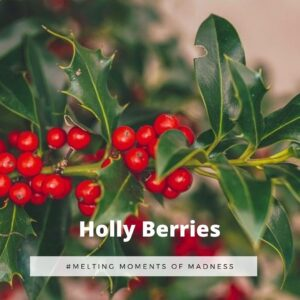 Holly Berries Wax Melts