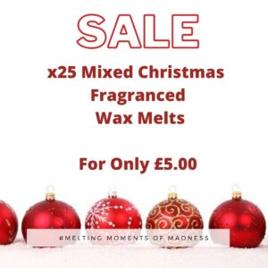X25 Christmas Wax Melts