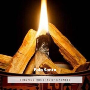 Palo Santo Wax Melts